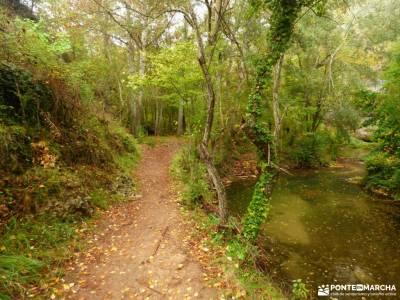 Hoces Río Duratón-Sepúlveda; excursiones madrid viajes semana santa ruta cares montaña palentina